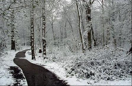 La nieve deja sin clase a 3.000 niños de A Coruña, Lugo y Pontevedra