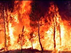 Dos nuevos incendios extinguidos en Silleda y Ponteceso