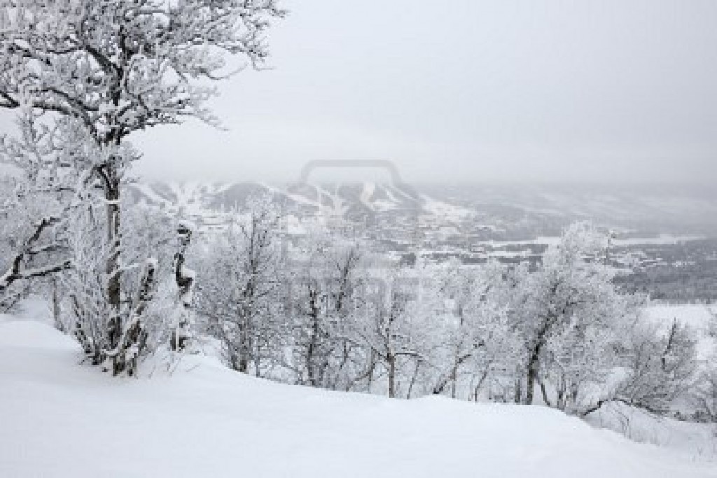 3 muertos en el noroeste de EEUU por la primera gran nevada