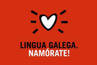 Denuncian o peche dos servizos de normalización lingüística en 15 concellos do país