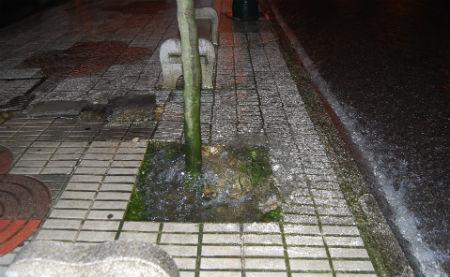 La rotura de una cañería inunda el final de Camelias y el agua llega hasta el cruce de López Mora