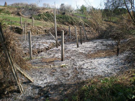 Un incendio en Beade arrasa 2.500 metros cuadrados de matorral