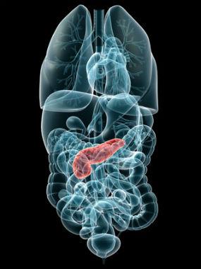 Hallan un gen que detiene el cáncer de páncreas