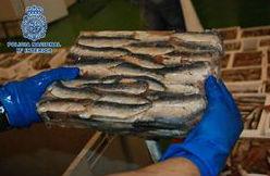 Detenidas 14 personas e intervenidos 900 kilos de hachís que entraba en España en sardinas congeladas