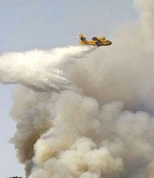 Detidas, en todo o Estado, 173 personas relacionadas con 1.770 incendios forestais