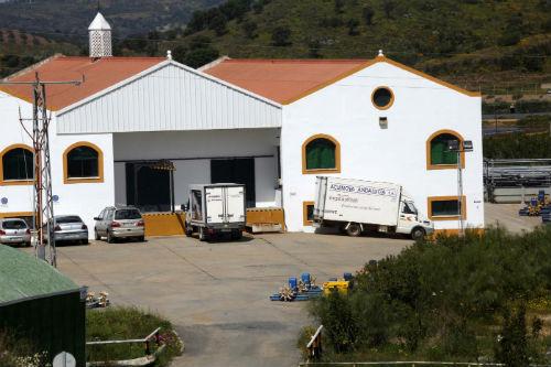 El juez ordena liquidar Acuinova, filial de Pescanova, lo que supone el despido de todos sus empleados