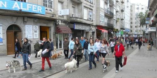 Los pontevedreses reclaman zonas habilitadas para pasear a los perros sin correa