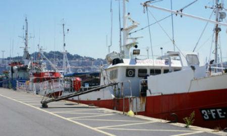 Dous anos dende que a flota cefalopodeira galega foi expulsada de Mauritania