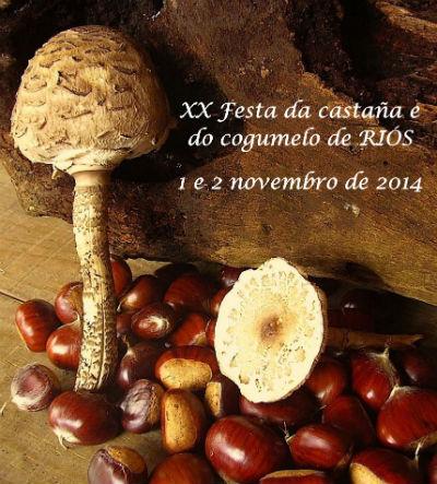 Esta fin de semana, festa da castaña e do cogumelo de Riós