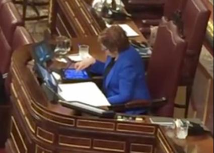 Los socialistas que están en la Mesa del Congreso, incluida Carmela Silva, deciden no pedirle explicaciones a Celia Villalobos
