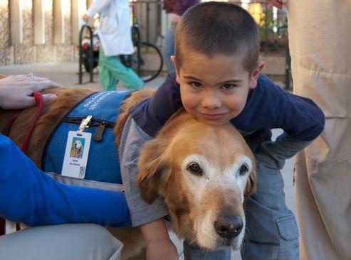 A terapia canina chegará a 15 centros de Educación Infantil e Primaria de Vigo