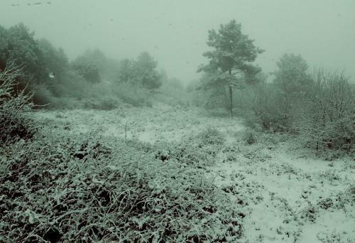 Tras un sábado de nieve en O Morrazo, Fornelos o A Franqueira, mejora el tiempo y suben algo las temperaturas