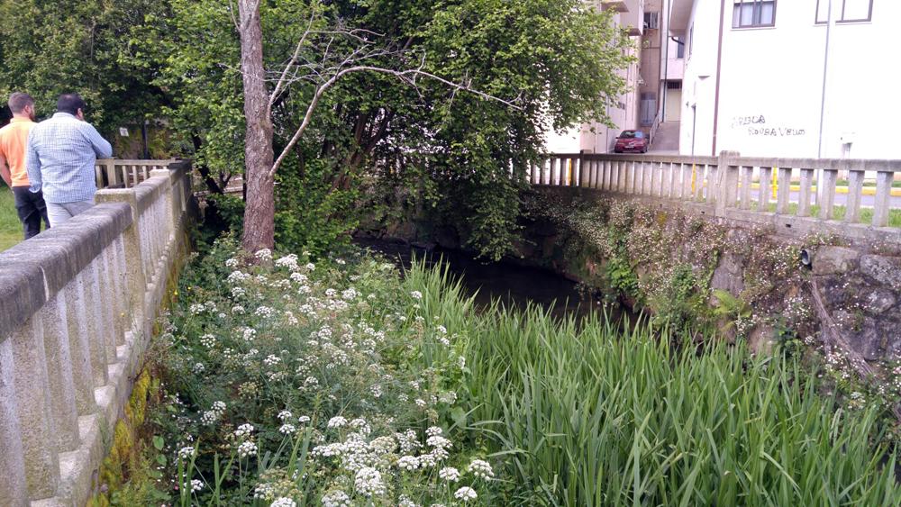 Arranca a limpeza do tramo urbano do río Maceiras en Redondela