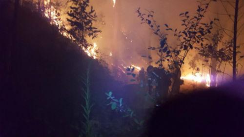 Nuevo incendio en Salceda, el número 17 en lo que va de semana