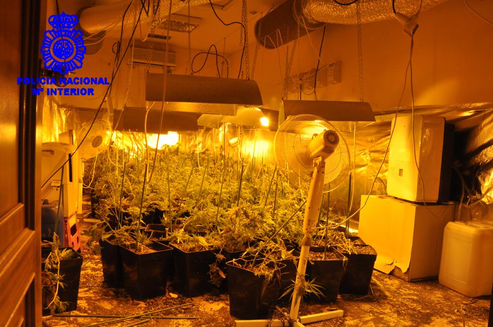 policia-nave-marihuana-01