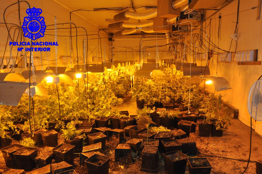 policia-nave-marihuana-02