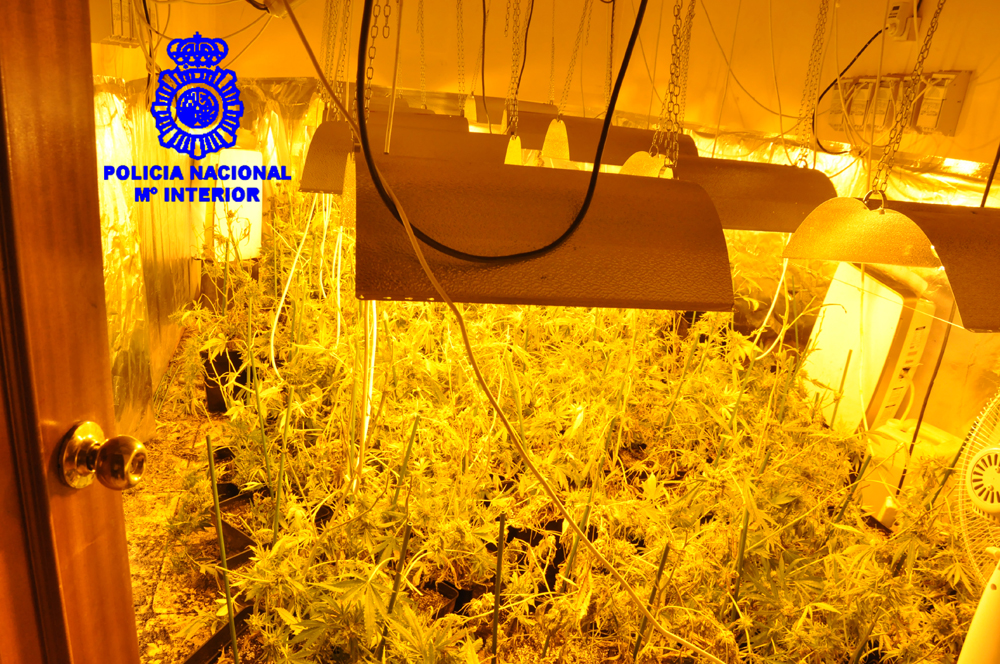 policia-nave-marihuana-03
