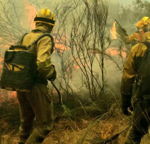 Un incendio no concello ourensán de Vilariño de Conso arrasou xa máis de 20 hectáreas
