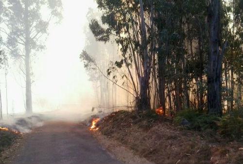 El fuego quema ya más de 30 hectáreas en la parroquia de Sever, en el concello de Viana do Bolo