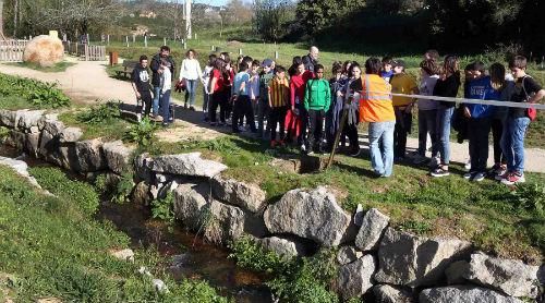 500 nenas e nenos plantan en @ponteareas_gal máis de 100 árbores