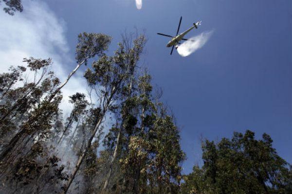 Apagado o lume que queimou 70 hectáreas de monte no concello ourensán de O Irixo