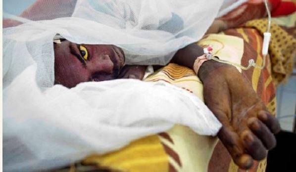 Más de 1.000 personas han muerto ya en Nigeria a causa de un brote de meningitis