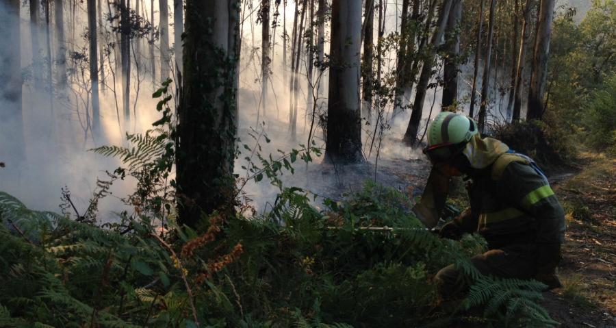 Expertos reunidos en Lourizán recomendan que as medidas logo dos incendios sexan coordinadas e escalonadas