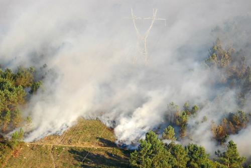 O Goberno de Galicia non constatou, polo momento, afección nos bancos marisqueiros coma consecuencia dos lumes