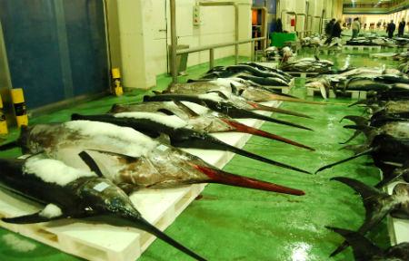 Seis detenidos en el Puerto de Vigo, entre ellos agentes portuarios, en una operación contra la pesca ilegal