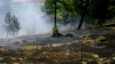 Patrimonio autoriza a intervención urxente na contorna do Castro de Chandebrito, en Nigrán