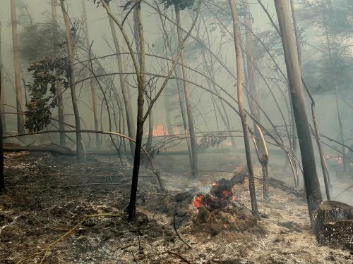 Galicia declarada zona gravemente afectada por una emergencia de Protección Civil a causa de los incendios