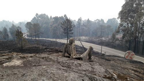 El proyecto 'Plantando Vida, de As Neves-Zona Cero, premiado en la VI Edición de 'Implicados y Solidarios' de Bankinter