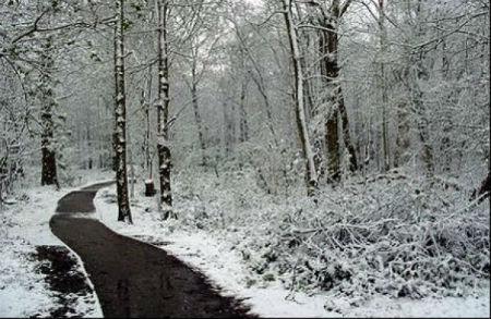 """Alerta por nevadas """"significativas""""nas montañas de Lugo e Ourense"""