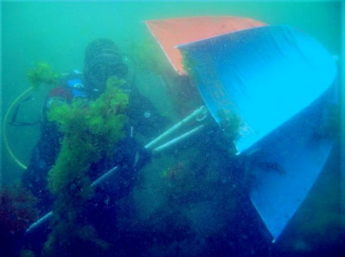 En marcha un proxecto que pretende a recuperación dos ecosistemas mariños das Illas Atlánticas
