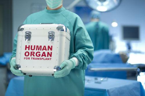 Holanda convierte, por ley, a todos sus habitantes en donantes de órganos