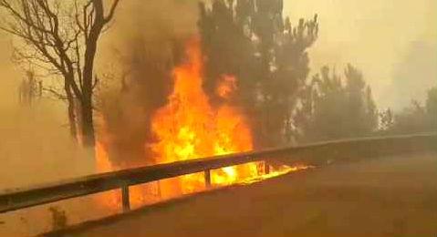 1.275 peticións de axudas tramitadas diante do Goberno de Galicia pola vaga de incendios