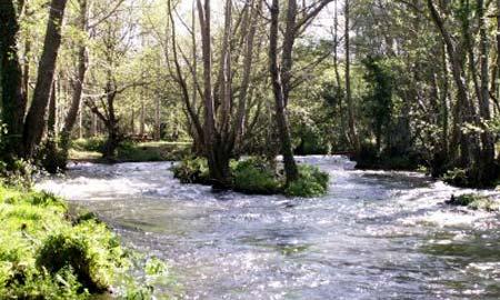 limpieza-rios