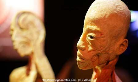 Exposición 'Érase una vez... la vida'. Foto: J. Albertos