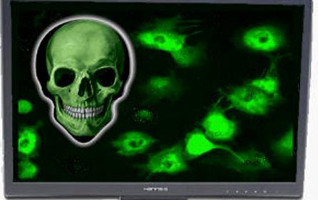 computer-virus
