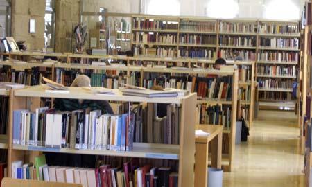 Máis de 3.500 persoas visitaron a web da biblioteca.