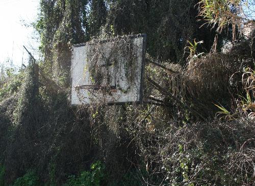 Estado actual en el que se encuentra la pista exterior de baloncesto