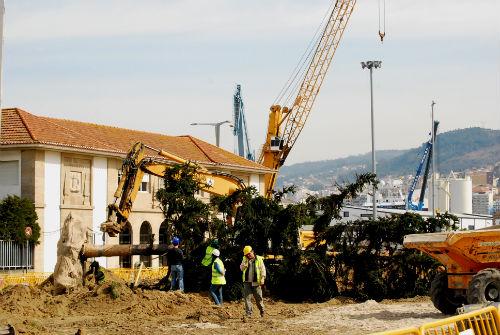 Los obreros arrancan con cuidado uno de los árboles de los jardines de O Areal