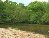 rio-caselas