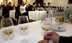 As catas de viño, un dos atractivos.