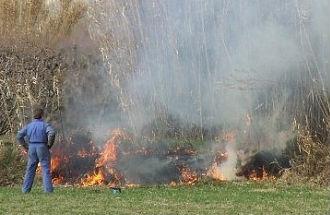quema-rastrojos