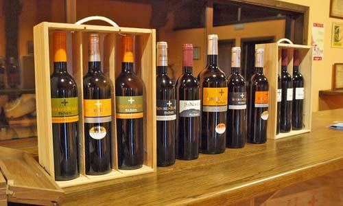 Muestra de los vinos Señorío de Rubiós de Bodegas Coto Redondo. Foto: Tresyuno Comunicación.