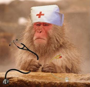 sistema británico de salud