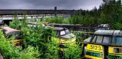 tren-abandonado