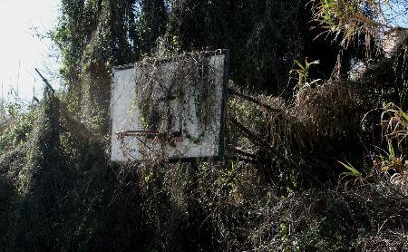 Estado actual das canchas de baloncesto da ETEA