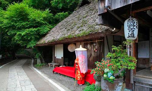 El Camino de Kumano Kodo.